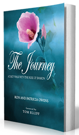The Journey 3D Cover Master 160x